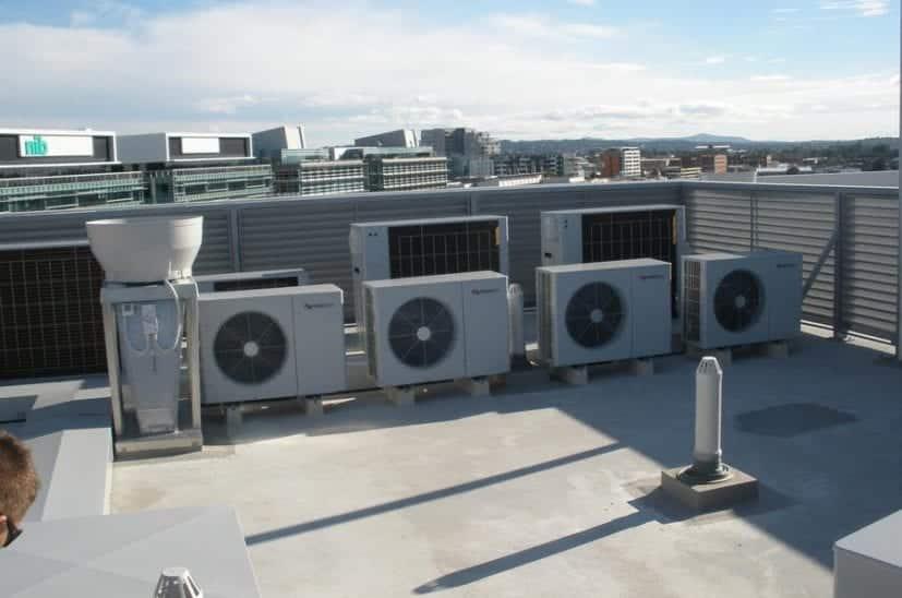 lee-wharf-roof-plant-827x548